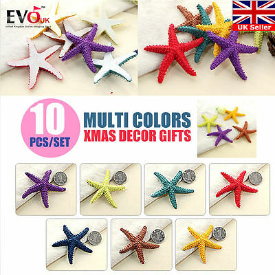 10pcs Colorful Natural Starfish Crafts Decor DIY For Micro Landscape Making 7cm