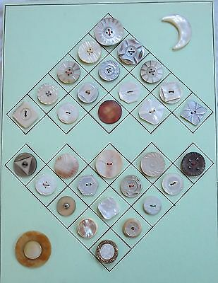 Decorative Shell, Mother of Pearl Button Lot Carded Vtg Old Antique