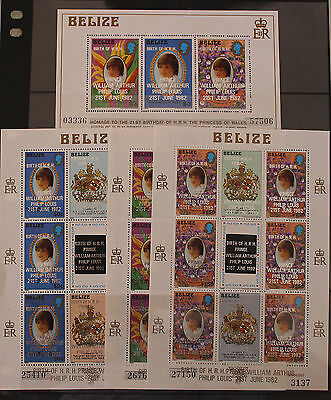 1982 Birth of Prince William 1st Issue 3 Sheetlets and Mini Sheet MNH Belize
