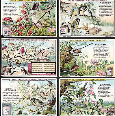 1899,liebig,*the Tit Family*,f599 / S598,set Of 6 Cards