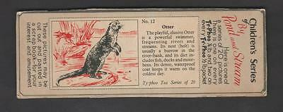 1960,typhoo Tea,childrens Series By Pond And Stream,*otter*