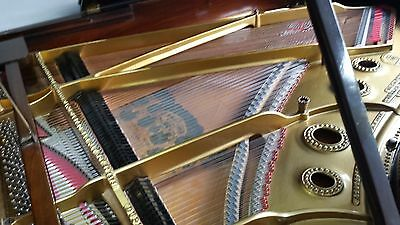 Steinway & Sons 6ft2 'A' Grand Piano Rosewood restored lovely sound *reduced*