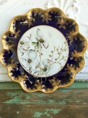Antique Aynsley Porcelain Cabinet Plate Colbalt/Gold Handpainted White Flowers