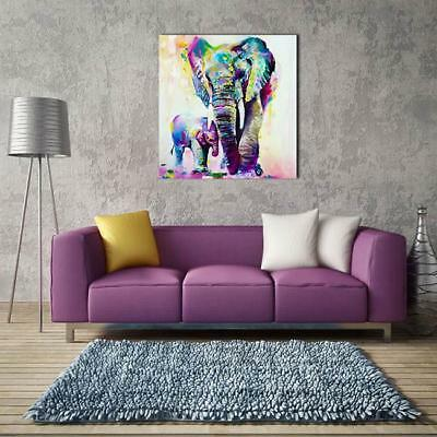 Canvas Prints Modern Home Decor Animal Wall Art Picture Elephant UNFRAMED -8C