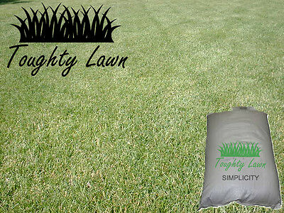 Toughty Lawn SIMPLICITY Economy Grass Seed 20kg Hard Wearing