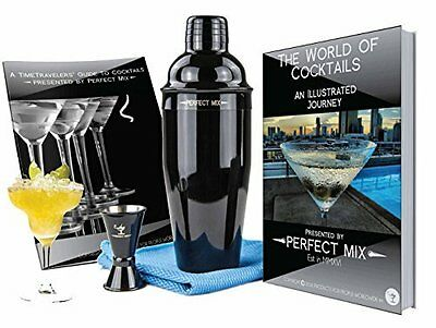 Pro Stainless Steel Cocktail Martini Shaker Set w/ Jigger, Tote & Bar Recipes