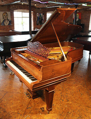 Antique, 1907, Steinway Model B grand piano for sale with a rosewood case