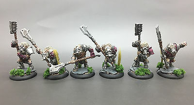 Privateer Press Warmachine Hordes Minions Farrow Slaughterhousers Painted