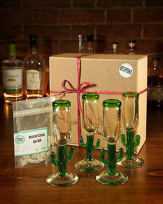 Cactus Tequila Gift Box Mexican Glassware Gift Set Christmas Shot Glasses