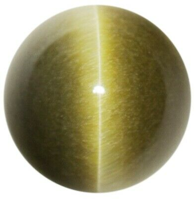 Natural Extra Fine Deep Green Tiger's Eye - Round Cabochon - South Africa - AAA+