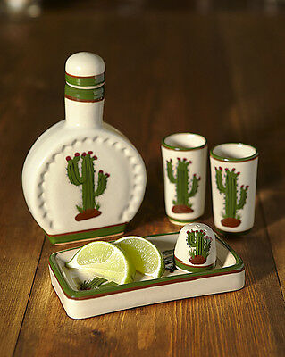 Ceramic Tequila Gift Set Mexican Cactus Handpainted Shot Glasses Christmas Gift