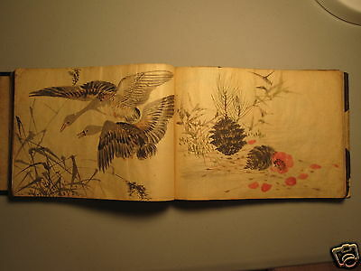 Antique Japanese Bird Botanical Fine Art 68 Paintings Asian Watercolor Duck Swan
