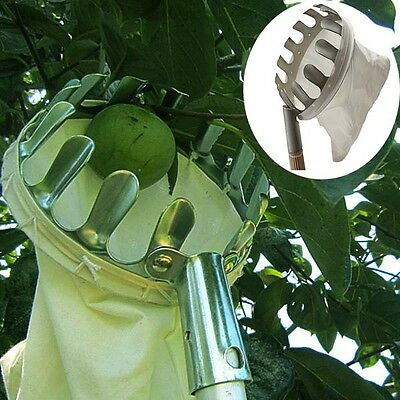 BG12 Practical Orchard Fruit Picker Gardening Fruits Picking Tool