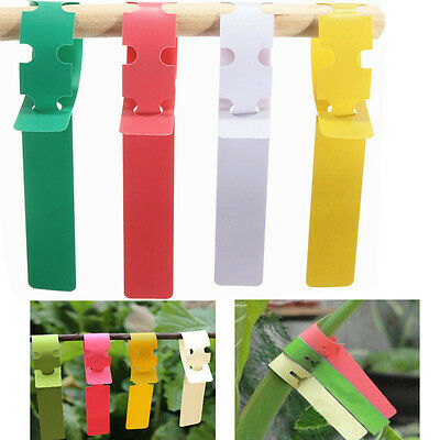 BG55 Waterproof Plastic Plant Hanging Tags Gardening Plant Flower Marker Label