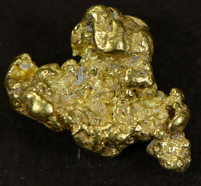 #216 Alaskan-Yukon BC Natural Gold Nugget 2.81 Grams Genuine