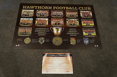 Hawthorn Premiers AFL Historical Series Official Print ONLY Hodge Rioli Mitchell