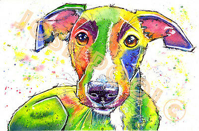 WHIPPET LURCHER Art PRINT of Original Watercolour Dog Hound Painting Picture Pup
