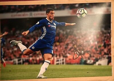 Eden Hazard Chelsea Fc Blues Hand Signed 12X8 Photo New Stock
