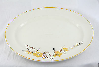Grays Pottery Hand Painted Oval Platter Floral Johnson Brothers Pareek 1940-50s