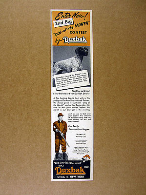 1955 German Short-Haired Pointer photo Duxbak 'Dog of the Month' print Ad