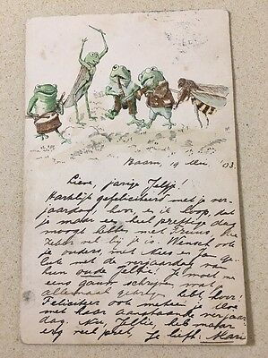1904 Dressed Frog Grasshopper Bee Playing Band Postcard Drun Violin