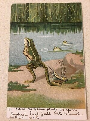 DRESSED FROG FANTASY ONE PULLING INSECT BEFORE 1907 Unused L@@K