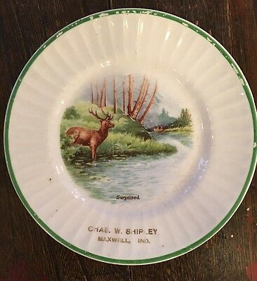 Vtg Souvenir Plate Maxwell Indiana Deer Stag Buck