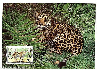 1983 Belize PHQ 9/12/83 The Jaguar 10c SG757 R27671