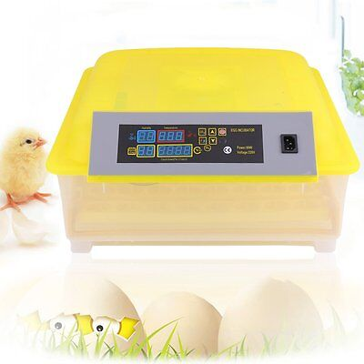 Automatic 48 Eggs Incubator Transparent Poultry Chicken Bird Egg Turning Hatcher