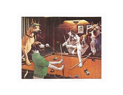 """""""Scratching Beagle"""" Unframed Pool Themed Print - 20 x 16 In [ID 31430]"""