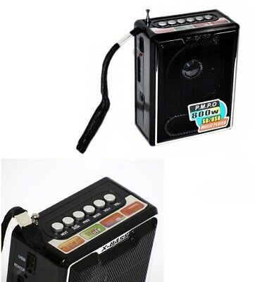 Amplificatore Radio Portatile Lettore Stereo Mp3 Fm Sd Card Usb  -Mnt-