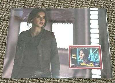 Felicity Jones Star Wars Rogue one signed Topps card display 12x8  AFTAL PROOF