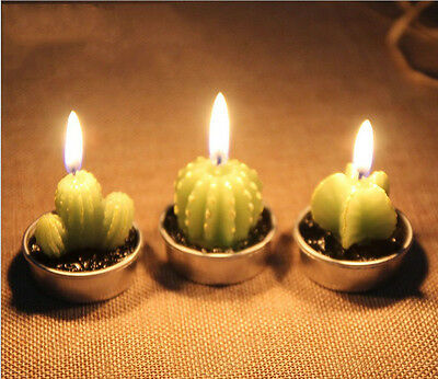 Cactus Candles for House Decoration Birthday Party Wedding Xmas Scented Candle