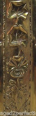 Old Brass Door Push Plate art nouveau styl ornate high relief floral stems thin