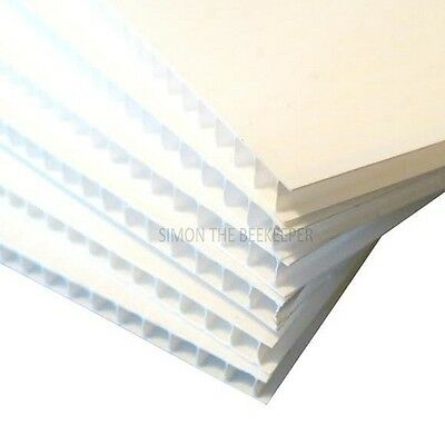 Beekeeping Correx Sheet 4mm
