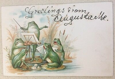 1906 Vintage Postcard 4 Dressed Frogs Playing Violin Sing Conductor Fantasy