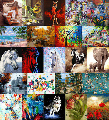 """16x20"""" DIY Acrylic Paint By Numbers kit Oil Painting On Canvas Horse Flowers A"""