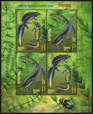 Stamp sheet of BELARUS 2012 - Joint issue of Belarus and Russia. Newts