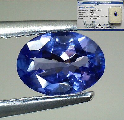 Brillante Tanzanite Naturale Intrattata  In Blister Ct. 0,74  Vs Vvs Ovale