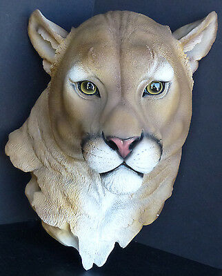 CATAMOUNT  Mountain Lion Head Statue Figurine DWK H16'' x D7.5'' x W11''