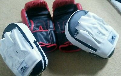 boxing gloves and pads set
