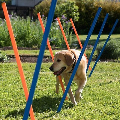 Fun Dog Activity Weave Poles Agility Training Slalom Course Dogs Fitness Kit Pup