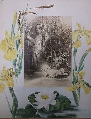 WATERCOLOUR PAINTING unsigned 1870s A STUDY OF BEAUTIFUL YELLOW FLOWERS