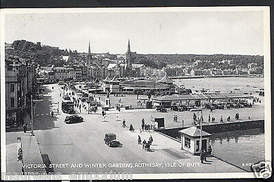 Scotland Postcard- Victoria Street & Winter Gardens,Rothesay, Isle of Bute RS167