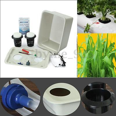 2 Large Hole Plant Site Hydroponic System Grow Bubble Tub DWC Deep Water Culture
