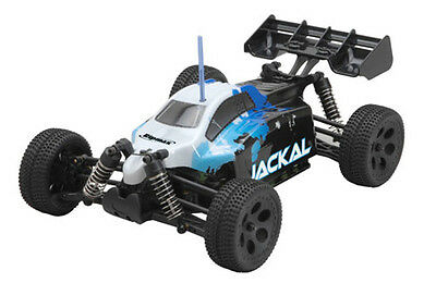 Ripmax Jackal RTR 1/18 Electric 4WD Buggy 2.4GHz RRP £71.99