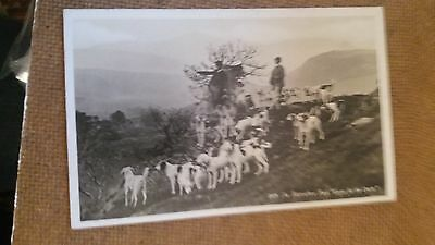 "LOT.A54. "" THE BLENCATHRA PACK- EGAR FOR THE CHASE. No.2054 "".  POSTED"