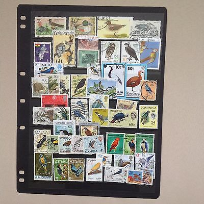 Selection of Birds on stamps from around the World