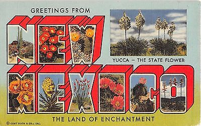 Large Letter postcard Greetings from New Mexico The Land of Enchantment