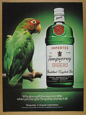 1989 green Macaw Parrot photo Tanqueray Gin vintage print Ad